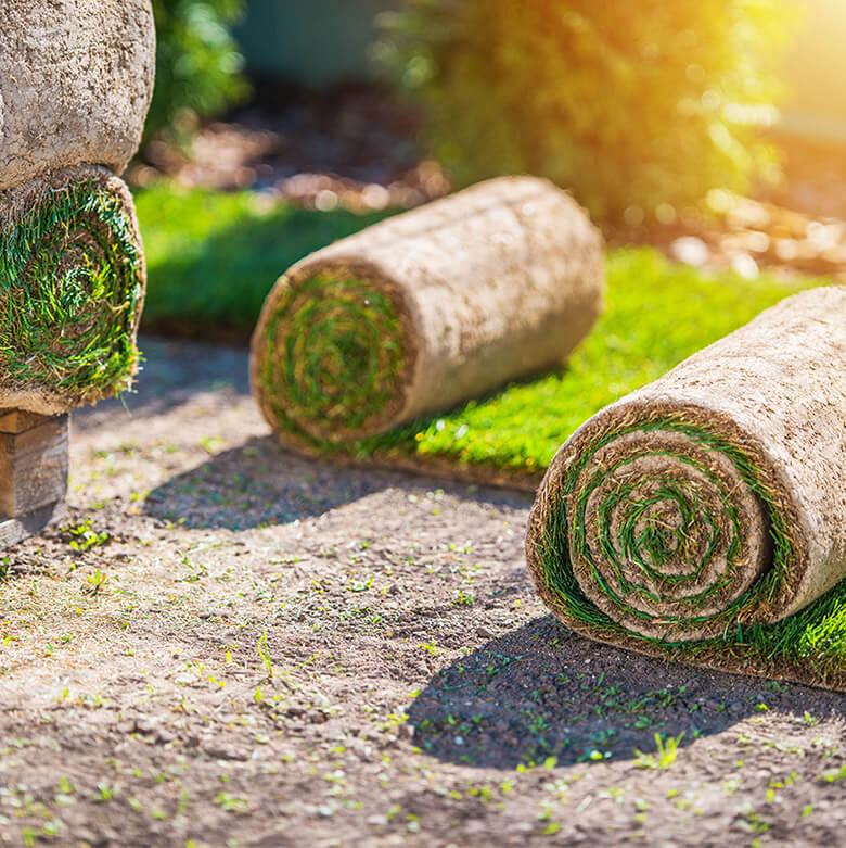 home_garden3_offer1
